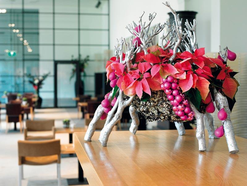 """""""Новогодних"""" растений куда больше, чем кажется. Фото с сайта цветы-в-рыбинске.рф"""