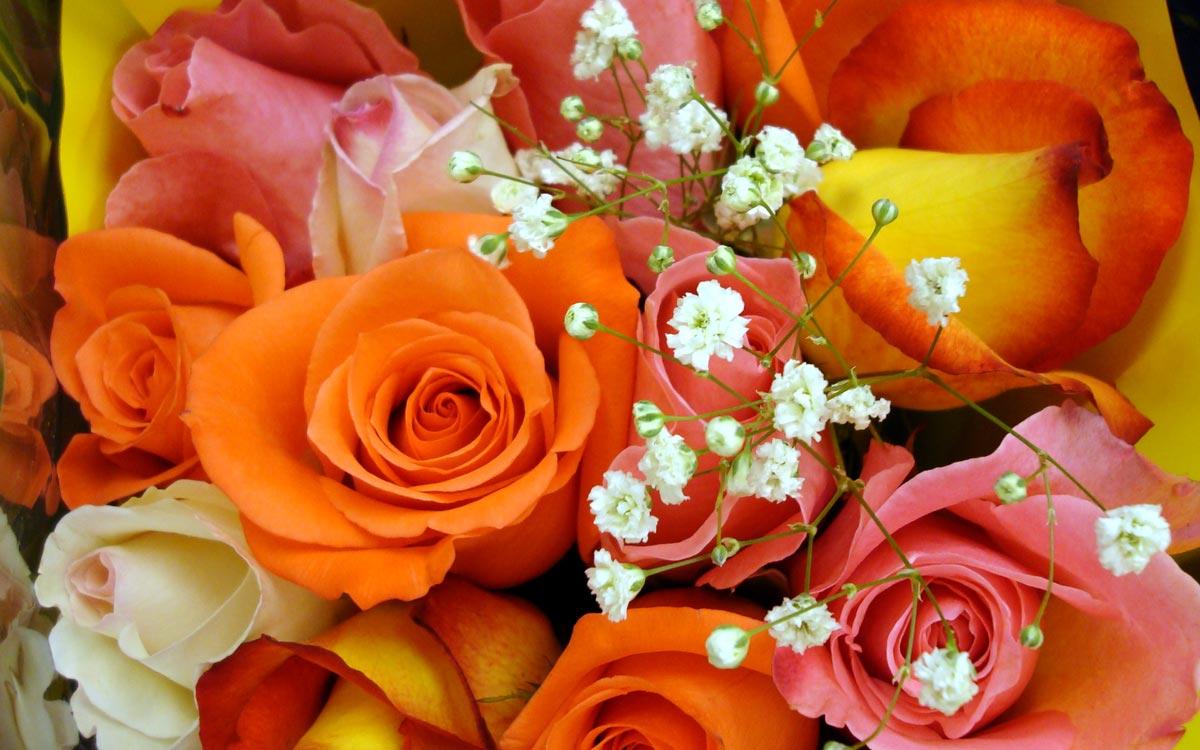 Розы - классика среди поздравительных букетов. Фото с сайта hddesktopwallpapers.in