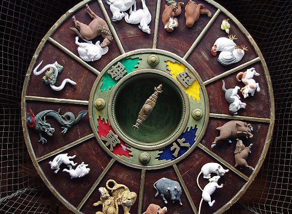 Обезьяна не любит других животных. Фото с сайта upload.wikimedia.org