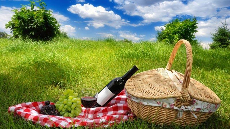 Пикник на природе летом. Фото с сайта charlie-sp.ru