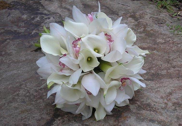 Каллы прекрасны и сами по себе. Фото с сайта www.unassvadba.ru