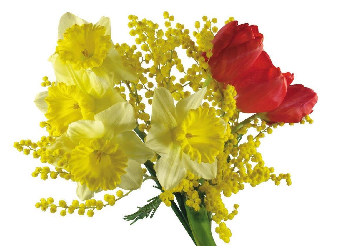 Самый весенний букет. Фото с сайта праздник.орг