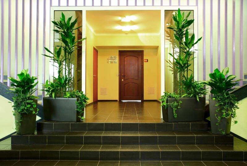 Живые растения в оформлении. Фото с сайта www.finatica.com