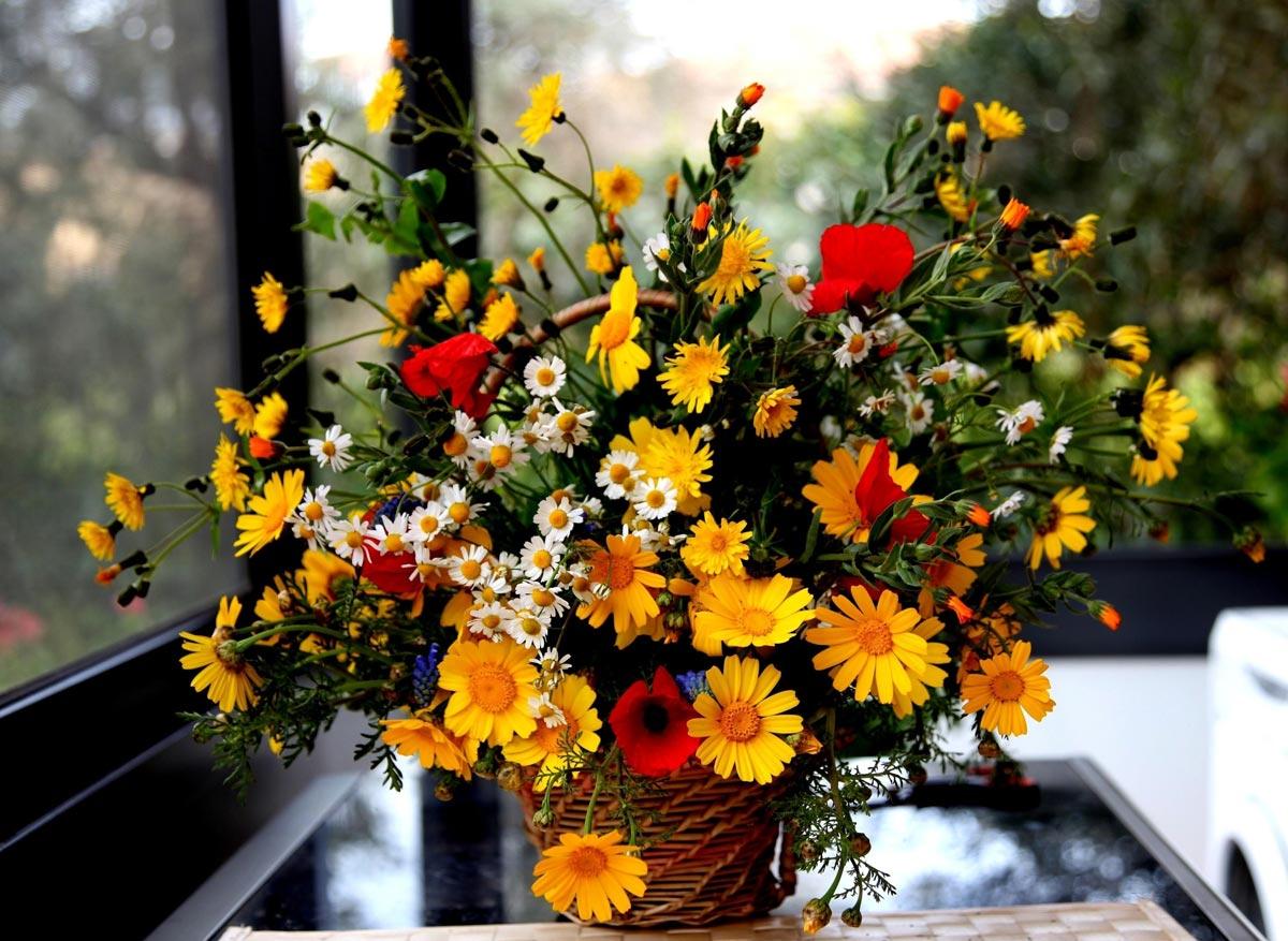 Оригинальный букет полевых цветов. Фото с сайта picsfab.com