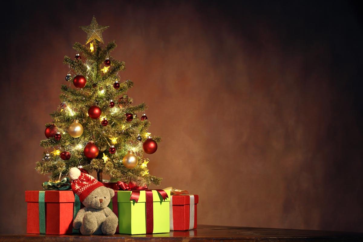 Фон для фото может быть простым, главное, новогодним! Фото с сайта goodfon.su