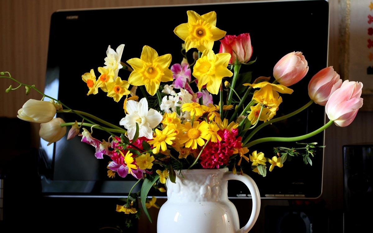 Букет первоцветов. Фото с сайта wallpaperscraft.ru