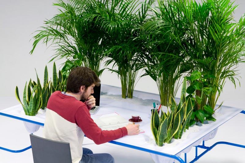 Оригинальное оформление рабочего места. Фото с сайта greenword.ru