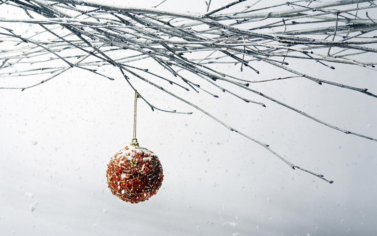 Простая и стильная флористика. Фото с сайта www.1280x800.net