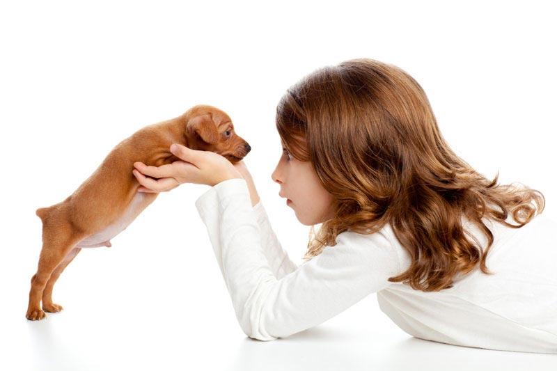 Подарите ребенку то, о чем он давно мечтает. Фото с сайта gogo.mn